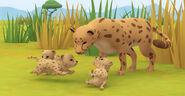 LTWR South African Cheetah