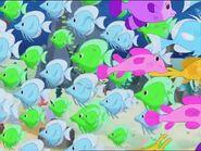 Leapfrog Fish