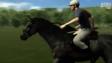 UTAUC Horse 6