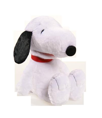 Snoopy's Clues