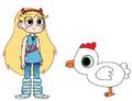Star meets Domestic Chicken