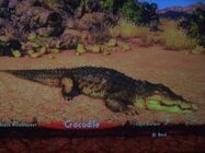 The nile crocodile by darcygagnon-d8dq7ez