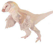 Barn Troodont