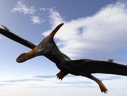 Caulkicephalus.jpg