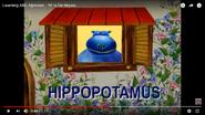 Hippopotamus Starts with H