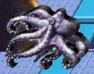Octopus reader rabbit 1st grade