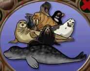 Pinnipeds in hugo lek och lar 7 hugo och djuren i havet
