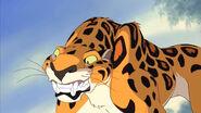 Sabor the Leopard