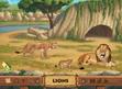 ABC Mouse Lions
