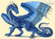 Blue European Dragon