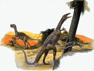 Coelurosaurs-encyclopedia-3dda