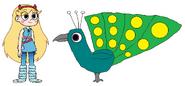 Star meets Green Peafowl
