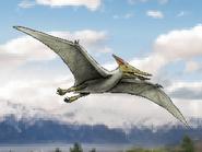 Dm pteranodon