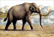 Inside steppe mammoth