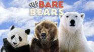 NR1 We Bare Bears Reboot