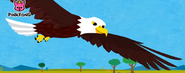 Pinkfong Eagle