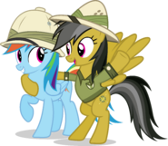 Rainbow dash with daring do by hampshireukbrony-d6de31w