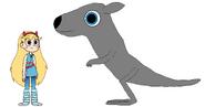 Star meets Eastern Grey Kangaroo