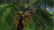 Madagascar-disneyscreencaps.com-7644