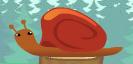Snail mib