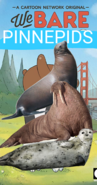 We Bare Pinnipeds Poster