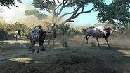 Cabela's wildebeests