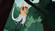 ProboscisMonkey (Wild Kratts)