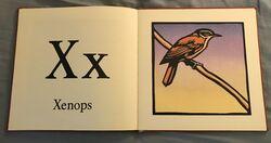 The New Alphabet of Animals (24).jpeg