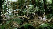 BBC.Walking.With.Dinosaurs.Ep5.Spirits.Of.The.Ice.Forest.DivX511.AC3.www.mvgroup.org.avi snapshot 02.33 -2017.01.01 14.27.22-