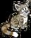 CP Andean Cat