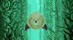 Steller Sea Lion (Wild Kratts)