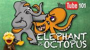 Elephant vs Octopus