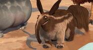 IA2TM Aardvark