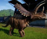 JWE Pentaceratops