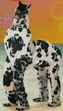 SBSP Zebra