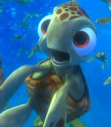 Squirt-finding-nemo-86.8