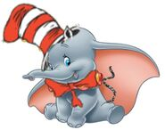 The Elephant in the Hat