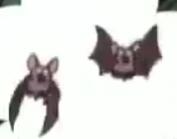 Dora Bats3