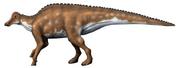 Hypracosaurus NT.png