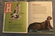 The Dictionary of Ordinary Extraordinary Animals (20)