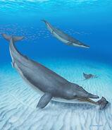 051117 LH ancient-whale inline 370