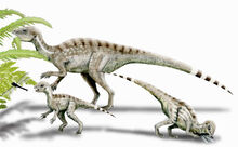 081023-heterodontosaurus-02.jpg