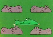 5-hippos-crocodile-fmafafe