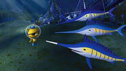 Octonauts swordfish