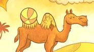 TTG Bactrian Camel