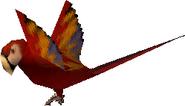 Parrot (1)