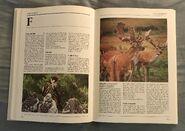 The Kingfisher Illustrated Encyclopedia of Animals (52)