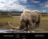 Woolly Rhinoceros (V2)
