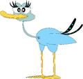 Alli the Ostrich
