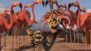 Madagascar2-disneyscreencaps.com-2784